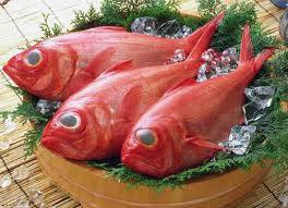 【金目鯛鍋プラン】金目鯛のしゃぶしゃぶ鍋プラン